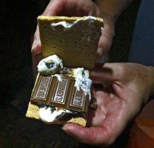 smores is the iconic muskoka treat. you can't beat and evening under the stars looking out over lake muskoka from muskoka soul luxury cottage rentals