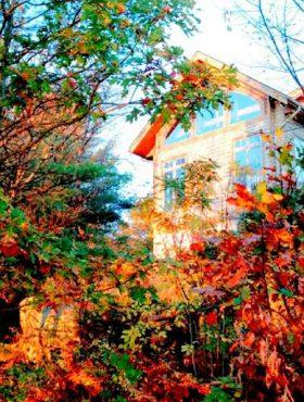 47 - Muskoka Soul-Lakehouse Fall
