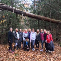 yoga retreat and wellness retreat muskoka soul take you out to nature and beauty of the region